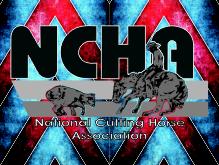 NCHABlanketSM