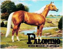 palominoSM